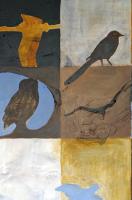 Vogels in de Alblasserwaard